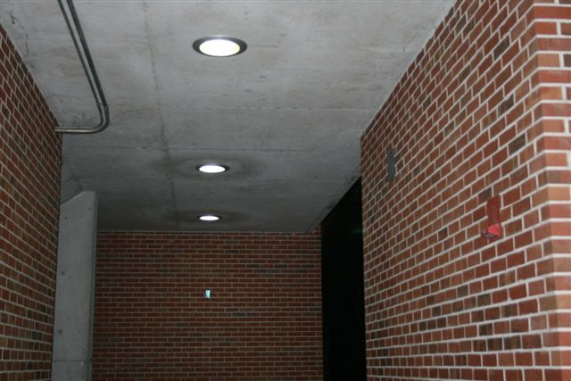 Can Light University of Florida